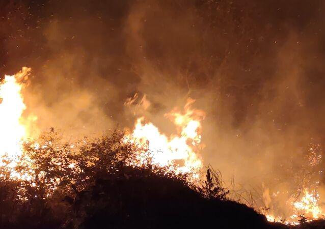 Bursa'da, İznik Gölü kıyısındaki sazlık alanda çıkan yangın kontrol altına alındı.