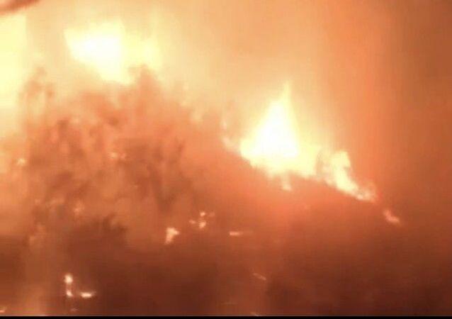 Hatay'ın Samandağ ilçesinde zeytinlik alanda çıkan yangın, ekiplerince 5 saatlik müdahalesinin ardından kontrol altına alındı.