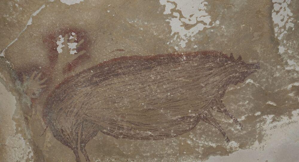 Bulunan ilk çizim, yaklaşık 1 metre 30 santimetre boya, 54 santimetre ene sahip ve yetişkin boyutlarda bir domuzu sergiliyor. Domuzun hemen arkasında iki adet el izi ve tam karşısında başka bir domuz figürü bulunuyor. Araştırmacılar, bu el izlerini çıkarabilmek için insanların ellerine pigment tarzında bir şey dökmeleri gerektiğini, bu el izlerinden en kısa zamanda DNA örnekleri çıkarmaya çalışacaklarını dile getirdi.