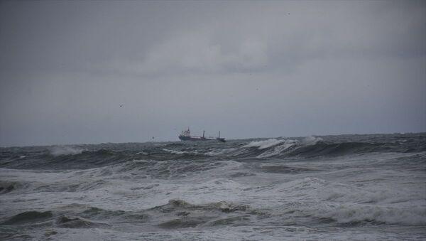 İnkumu açıklarında Palau bandıralı bir kuru yük gemisi battı - Sputnik Türkiye