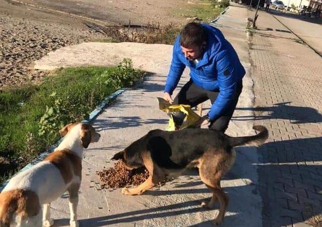 Zonguldak'ın Çaycuma ilçesinde veteriner olan Doğuş Özdil hayvanseverlere yardım çağrısında bulundu.