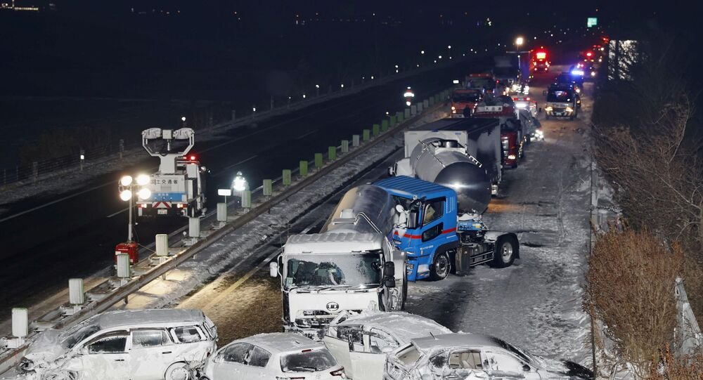 Japonya'da kar