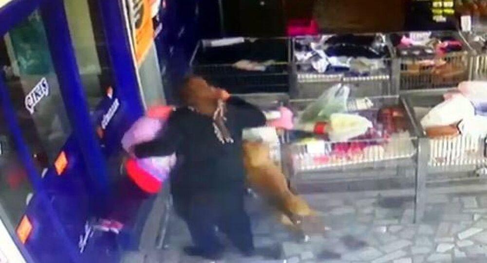 Pitbull saldırı