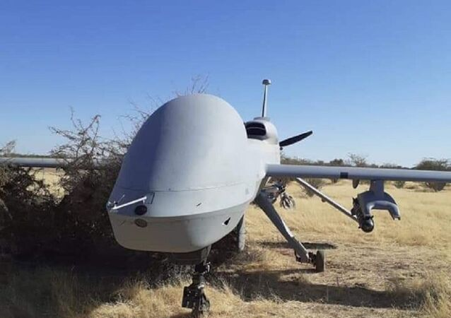 ABD'ye ait silahlı MQ-1 hava aracı