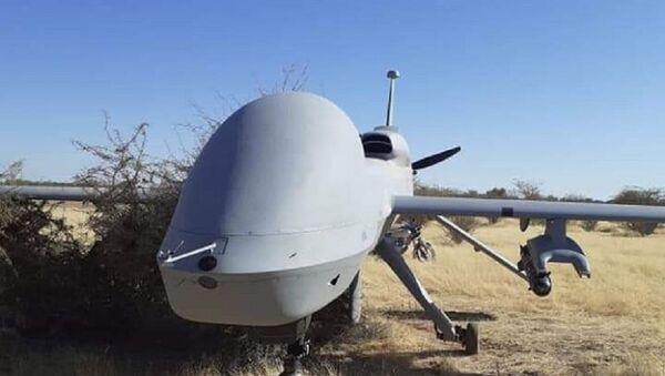 ABD'ye ait silahlı MQ-1 hava aracı - Sputnik Türkiye