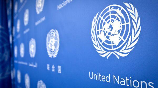 Birleşmiş Milletler - BM - Sputnik Türkiye
