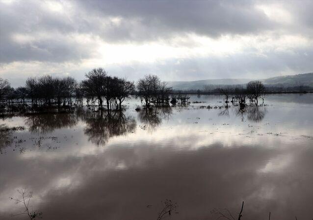 Ergene'nin suyu tarım arazilerine yayılmaya devam ediyor: Taşkın riski 'kırmızı alarmda'