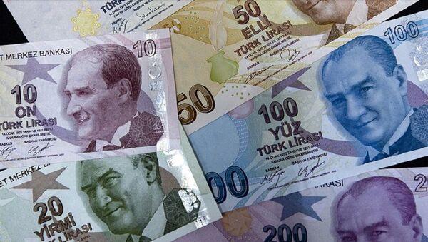 Türk Lirası - Sputnik Türkiye