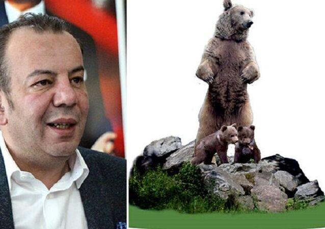Bolu Belediye Başkanı Tanju Özcan, bozayı