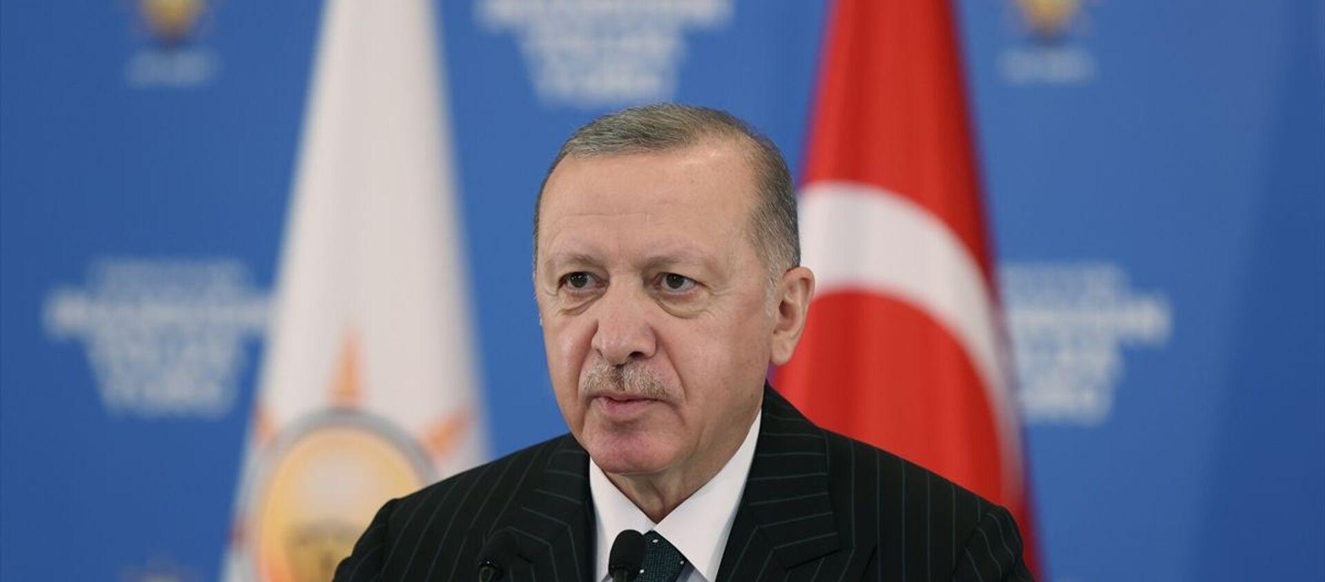 Recep Tayyip Erdoğan - Sputnik Türkiye, 1920, 12.02.2021