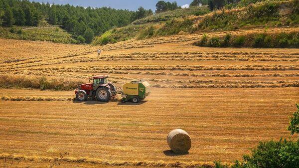 traktör, tarla - Sputnik Türkiye