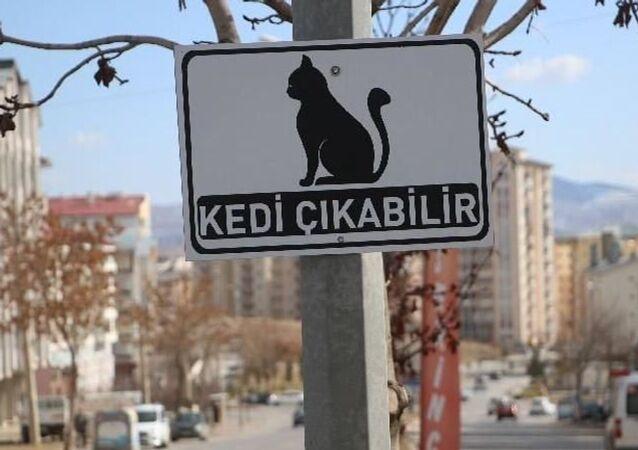 Sivas Belediyesi'nden 'kedi çıkabilir' tabelası