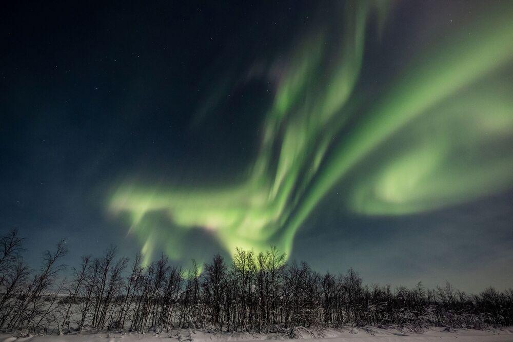 Finlandiya'nın Laplandiya bölgesinde Kutup ışıkları