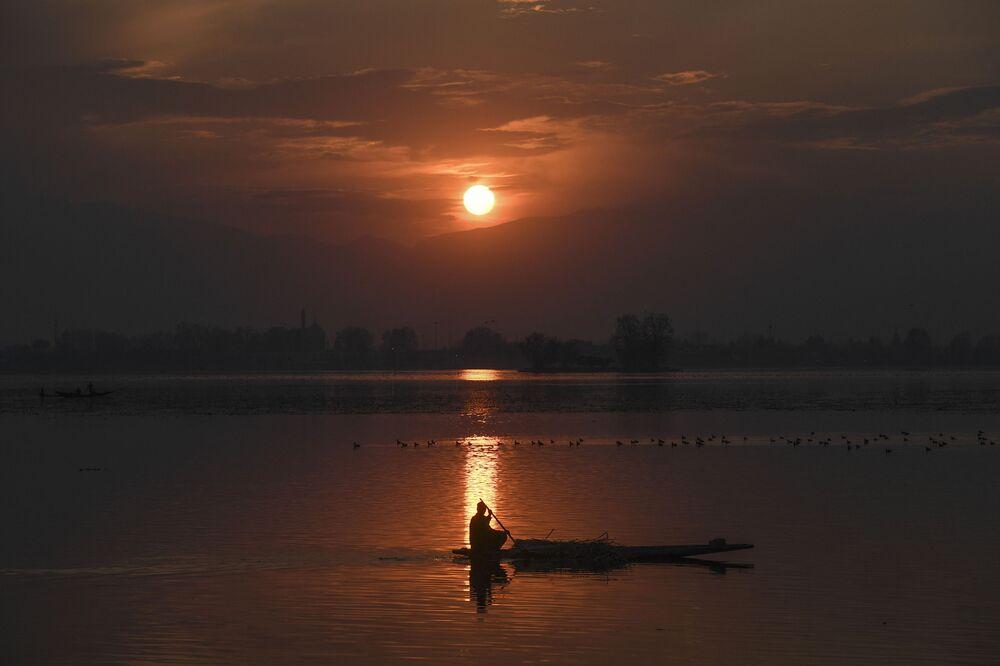 Hindistan'ın Srinagar kenti, Dal Gölü