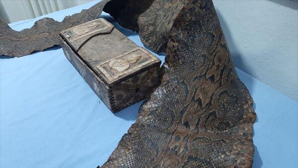 Üzerinde İbranice yazılar bulunan 3 buçuk metrelik tarihi yılan derisi ele geçirildi - Sputnik Türkiye