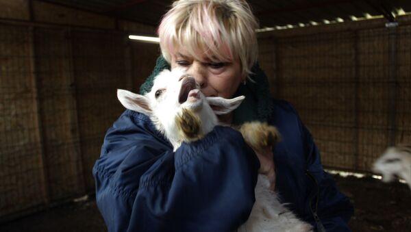 Beslediği keçilerin ne etinden ne de sütünden faydalanıyor - Sputnik Türkiye