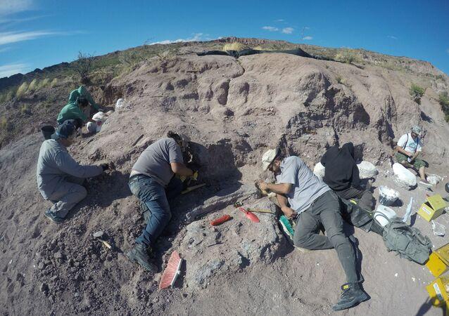 Arjantin'de, en eski dinozor topluluğuna ait fosiller bulundu