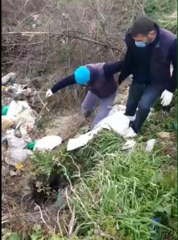 Tekirdağ'ın Malkara ilçesinde yol kenarında çuval içinde ölü bulunan köpeğin, ayaklarından bağlandığı ve eziyete maruz kaldığı ortaya çıktı.