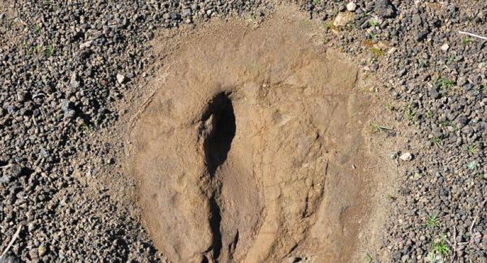 Kula-Salihli UNESCO Global Jeoparkı'ndaki ayak izleri