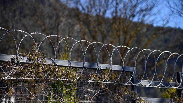 Fethiye`de hayvanlara zarar verdiği için bahçelere jiletli tel çekilmesi yasaklandı - Sputnik Türkiye