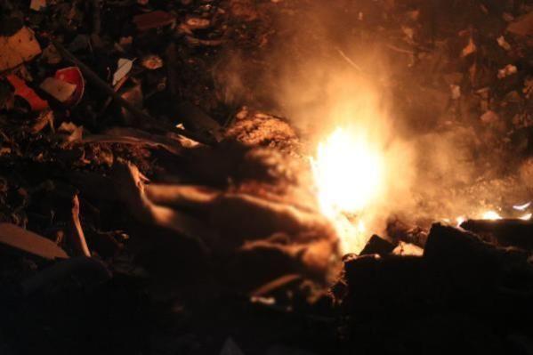 Ankara'nın Gölbaşı ilçesinde yakılmış köpek cesedi bulundu. Olayın görgü şahidi vatandaş ise daha önce de bu bölgede yakılmış köpekleri gördüğü ve 3 gündür arazide ateş yakıldığını söyledi.