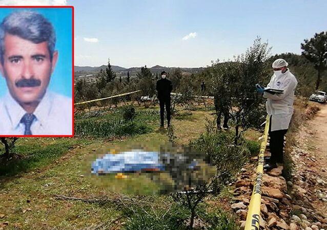 Zeytin ağaçlarını kestiği gerekçesiyle tartıştığı ağabeyini öldürdü