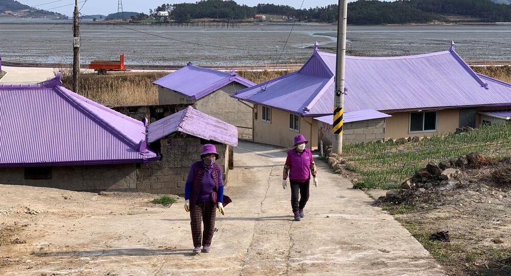 Güney Kore'de, adalara turist çekmek için sıra dışı yöntem: Her şey mora boyandı