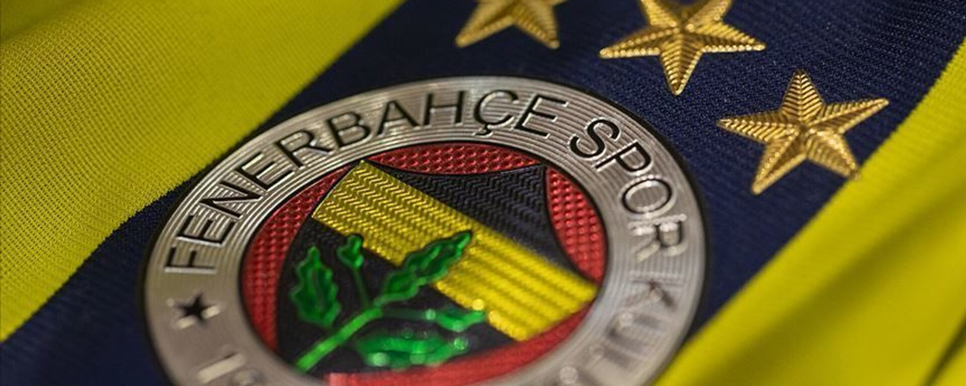 Fenerbahçe arma, forma, logo - Sputnik Türkiye, 1920, 07.04.2021
