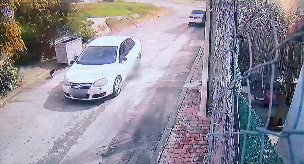 Mersin'de kediyi ezen sürücü