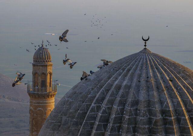 antik kent Mardin