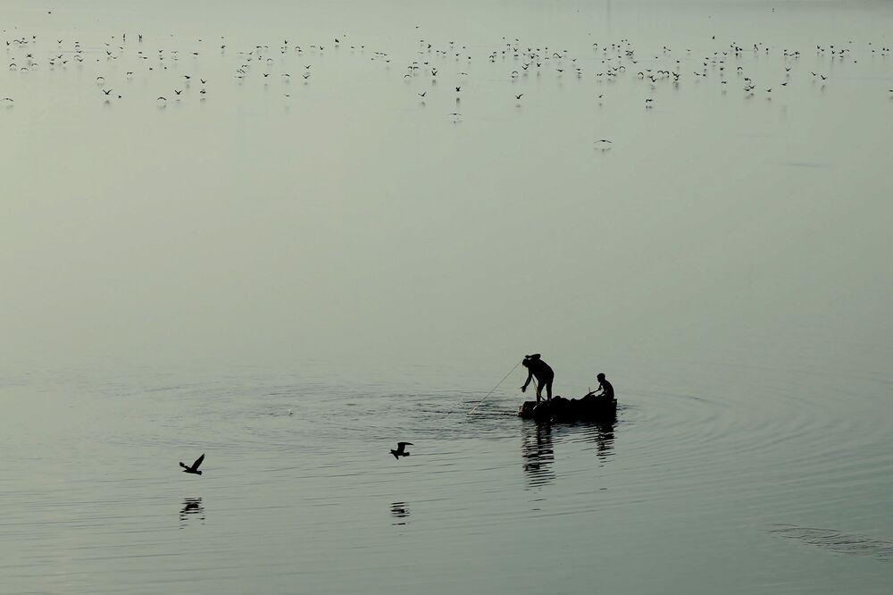 Baraj gölü üzerinde koloni halinde yaşayan ve Van Gölü martıları olarak bilinen martılar, teknelerinden baraj gölüne ağ atan balıkçılar objektiflerde tabloluk görüntüler oluşturdu.