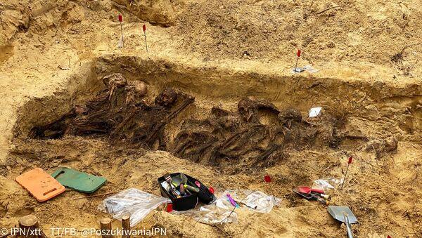 Polonya'da 2. Dünya Savaşı sırasında Naziler tarafından öldürülen 29 kişinin iskeleti bulundu  - Sputnik Türkiye
