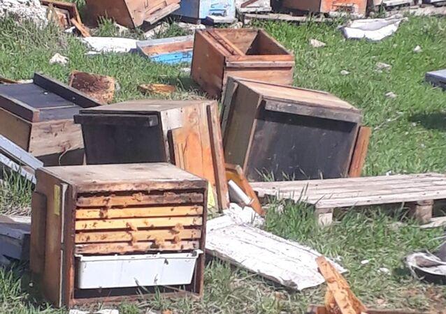Hakkari'nin Çukurca ilçesinde kış uykusundan uyanan ayılar, 150 arı kovanına zarar verdi.