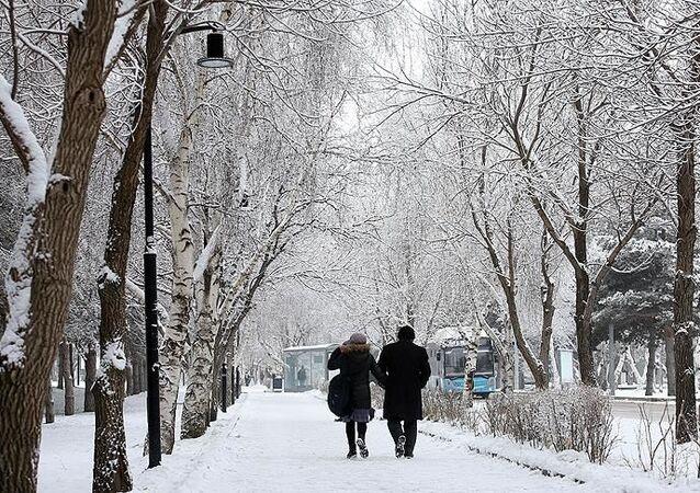 Doğu Anadolu, Erzurum, kar yağışı