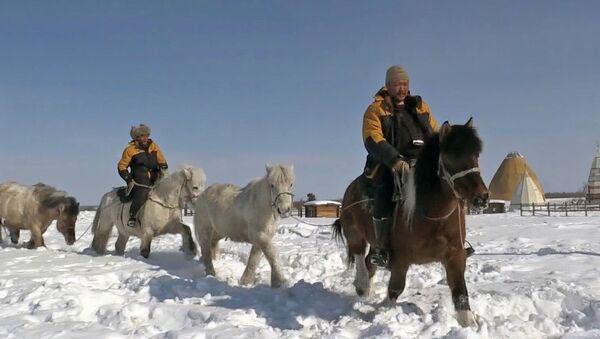 Yakut atlarını dünyaya göstermek için Yakutistan'dan Avrupa'ya gidiyorlar - Sputnik Türkiye