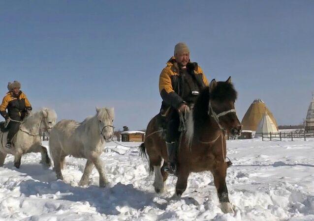 Yakut atlarını dünyaya göstermek için Yakutistan'dan Avrupa'ya gidiyorlar