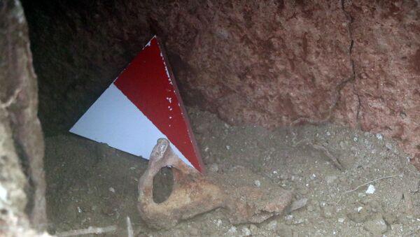 Devrek'te Roma dönemine ait mezar bulundu - Sputnik Türkiye