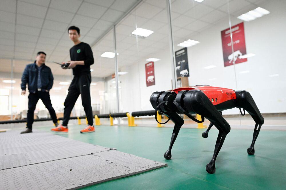 Ürünün üretimini yapan Weilan şirketinin teknoloji sorumlusu Ma Jie, Gerçek bir köpeğe gerçekten çok benziyor dedi.