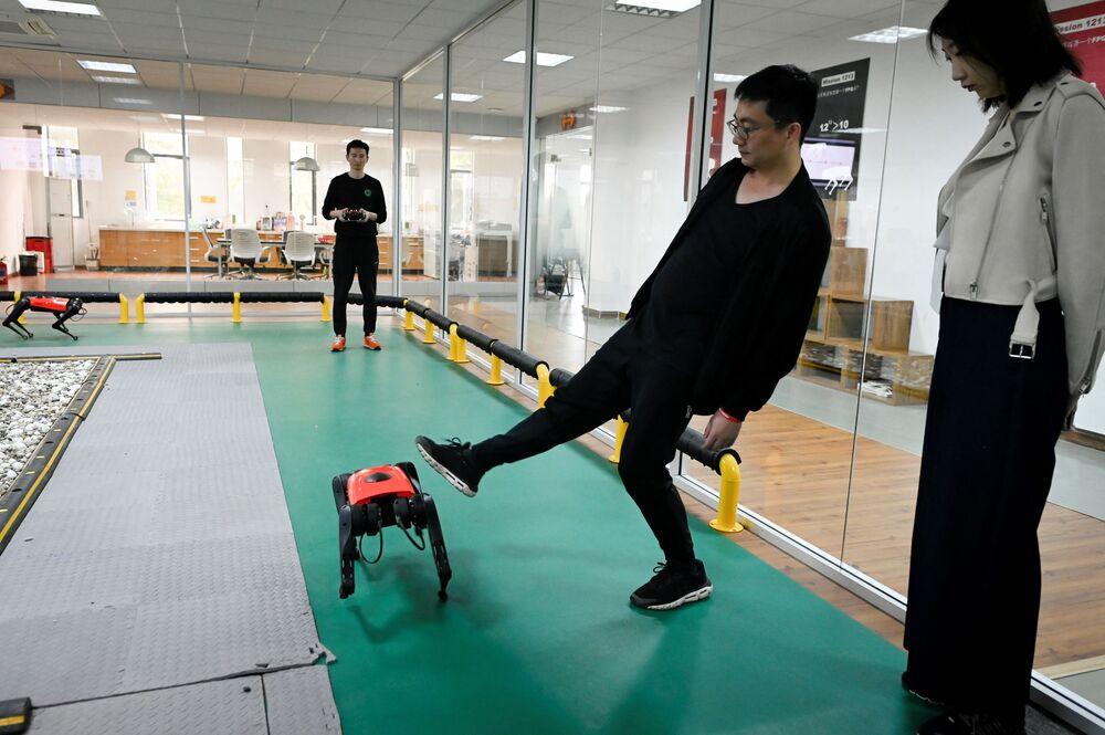 Ma, Alphadog'un dört metal ayağıyla gerçek bir köpekten daha stabil olduğunu ifade etti. Ma'nın ekibinden biri, bunu kanıtlamak için köpeği tekmelese de, AlphaDog'un bu tekmelere rağmen dengesini tekrar rahatlıkla sağlayabildiği görüldü.