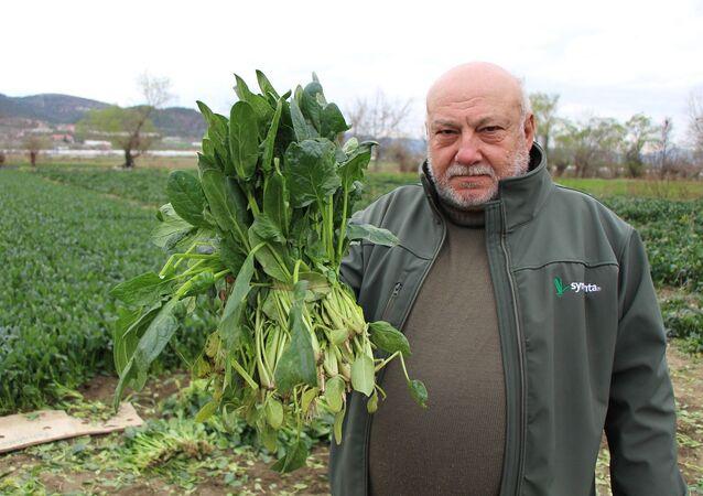 Amasya'da yaşayan çiftçi Mehmet Gülsoy