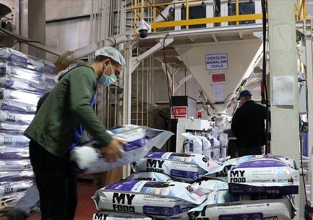 Türkiye, kedi, köpek maması, ihracat