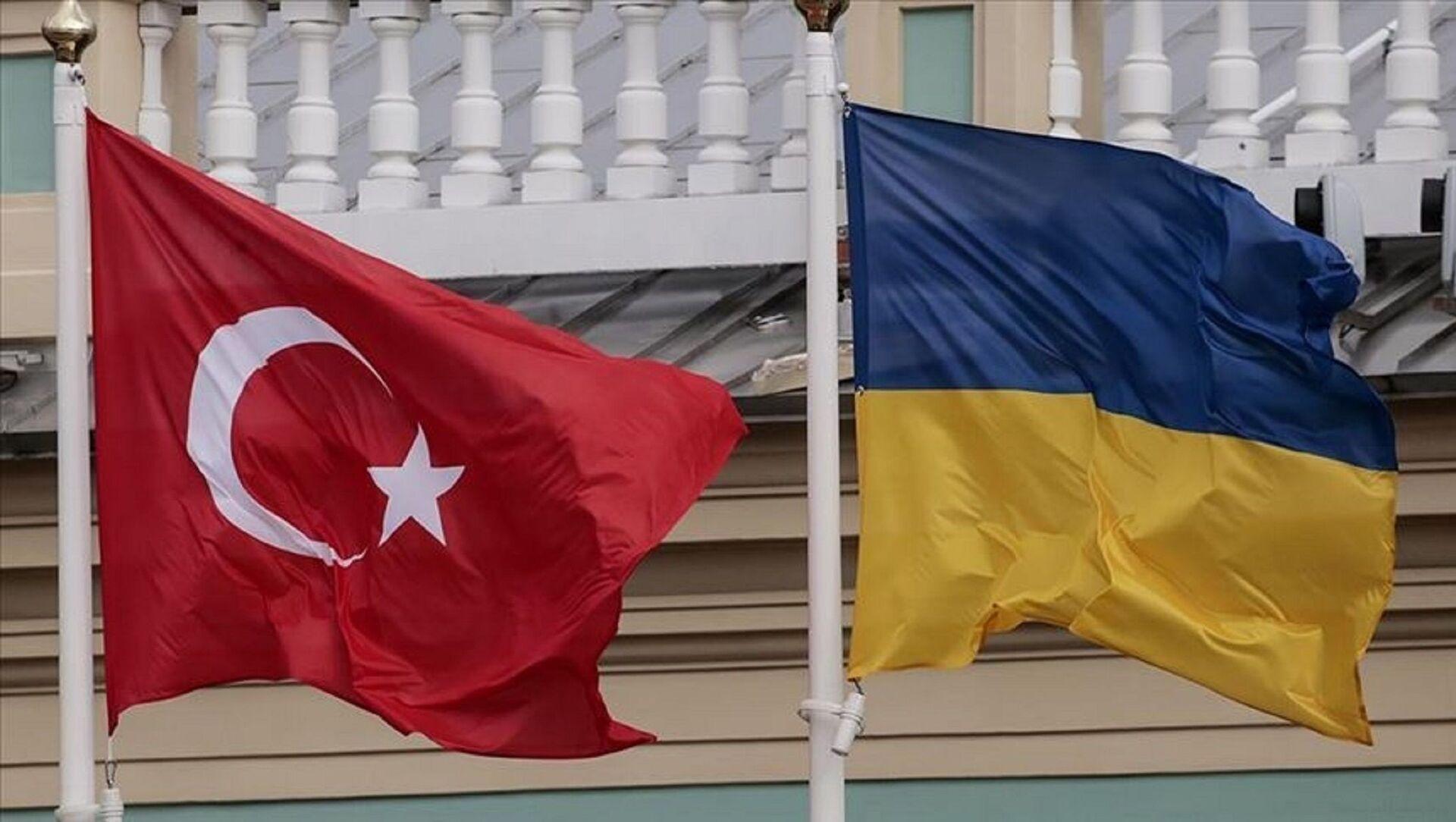 Türkiye - Ukrayna - Sputnik Türkiye, 1920, 31.07.2021