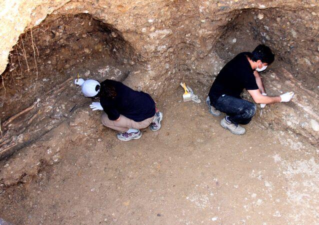 Adıyaman, 7 iskelet, 1500 yıllık mezar odası