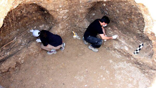 Adıyaman, 7 iskelet, 1500 yıllık mezar odası - Sputnik Türkiye