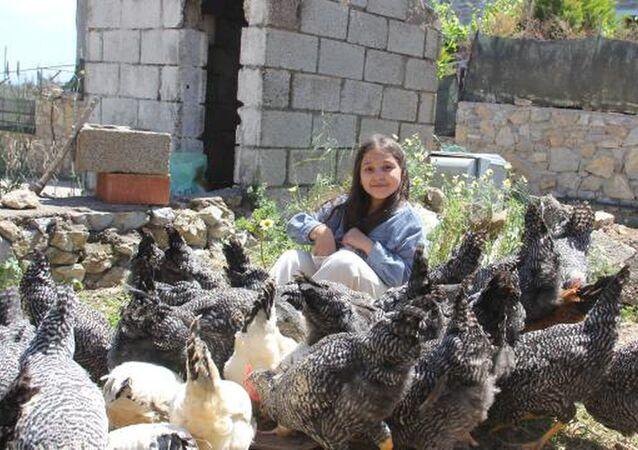 Yılbaşı harçlığıyla 20 civciv alan 9 yaşındaki Lidya'nın 65 tavuğu oldu
