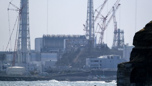 Japonya- Nükleer - Sputnik Türkiye