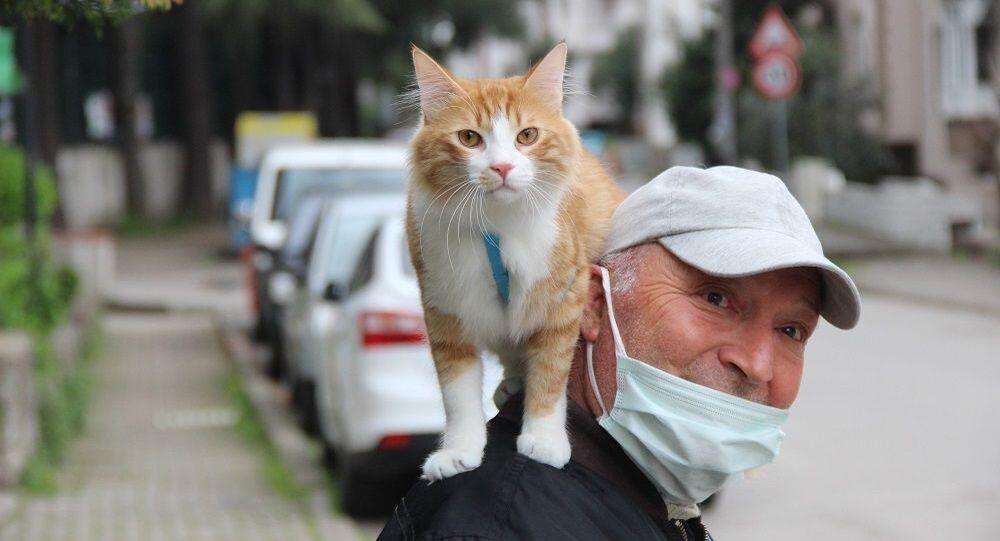 Metin Gül, gittiği her yere kedisini de omzuna alarak gidiyor