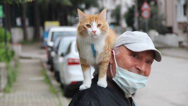 Metin Gül, gittiği her yere kedisini de omzuna alarak gidiyor - Sputnik Türkiye