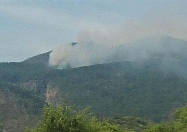 Muğla'nın Ortaca ilçesi, orman yangını