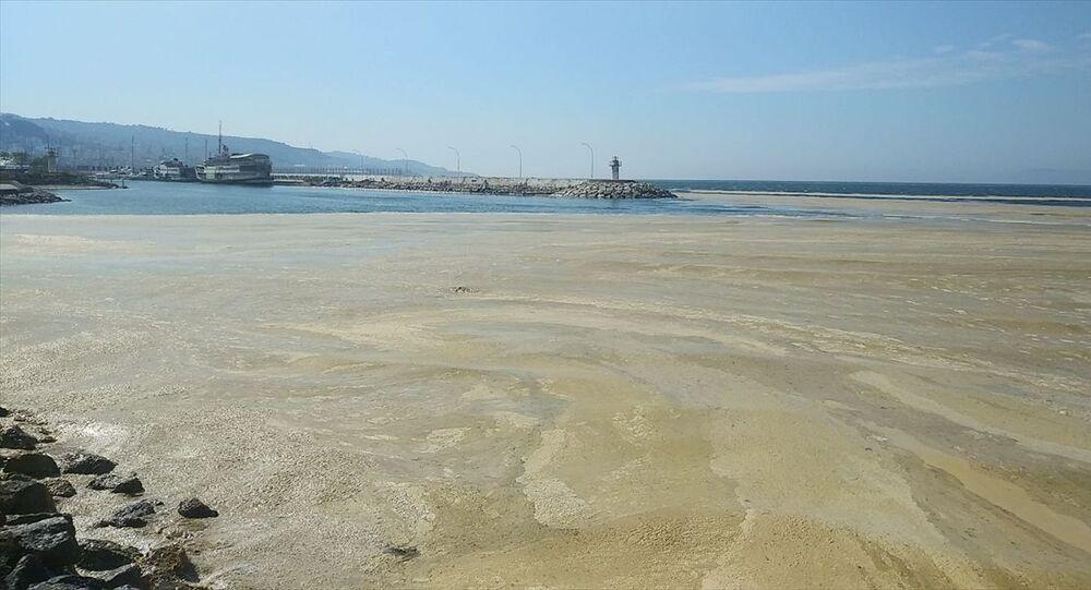Mudanya'da denizde salya etkili oluyor